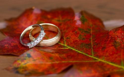 Свадьба в стиле осень в картинках